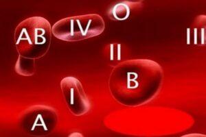 Что означает группа крови человека и как она влияет на характер?