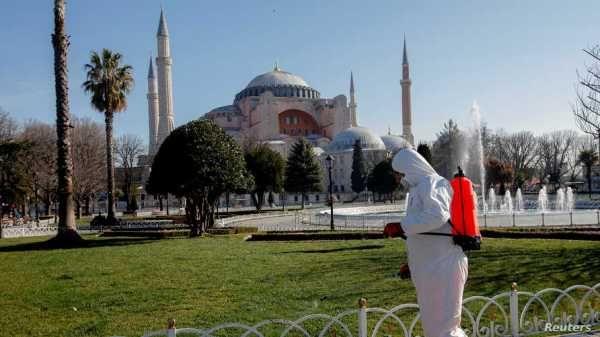 Стамбул расцвёл в декабре: мегаполис окунулся в экологический дисбаланс