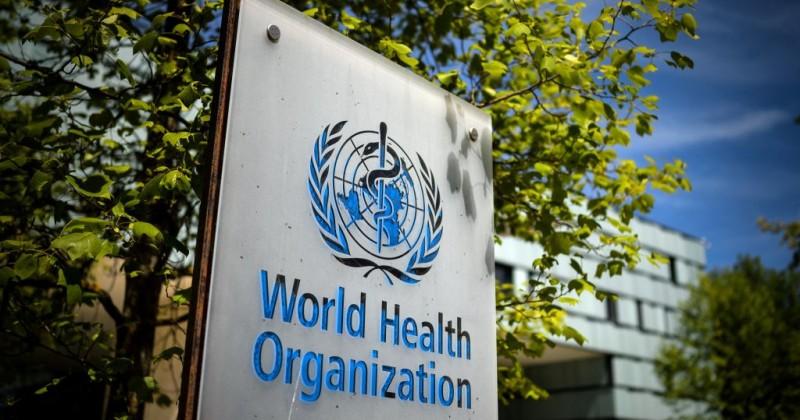 Группа экспертов утверждает, что ВОЗ могла бы спасти более 3 миллионов жизней, если бы рекомендовала ввести пограничный контроль ранее
