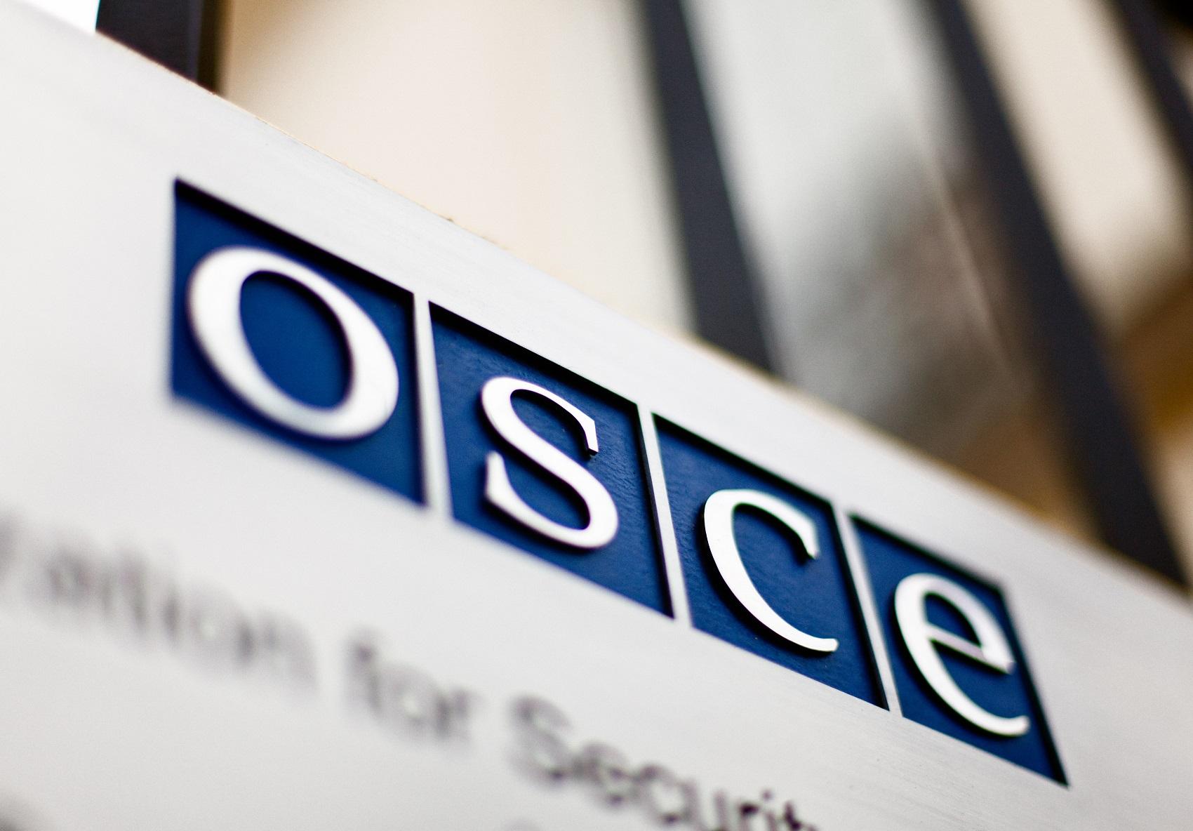 Мнение: ОБСЕ переживает системный кризис и не справляется со своими задачами