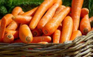 Морковь – кладезь полезных веществ, однако неправильное употребление превращает ее в яд!