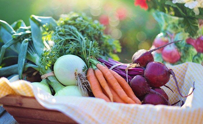ABC: ешьте этот чудо-овощ — и ваша старость будет здоровой