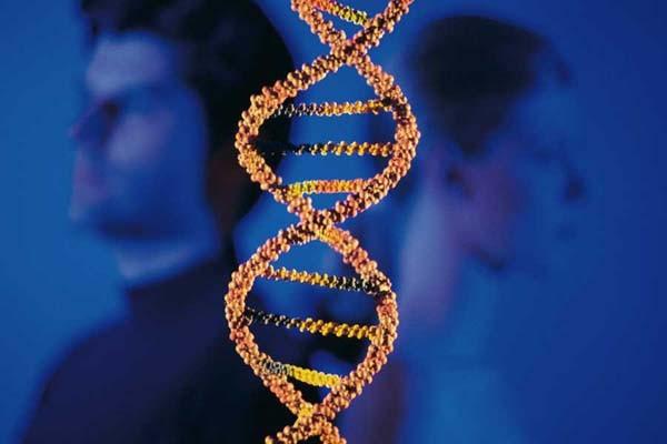 Расшифровка истории человечества с помощью древней ДНК