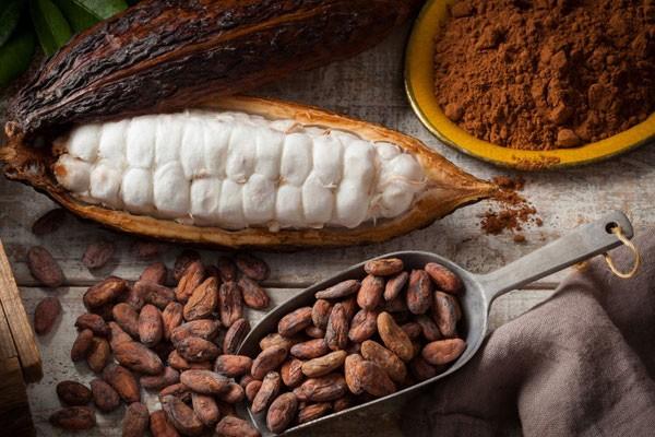 Какао-порошок способен повышать остроту зрения