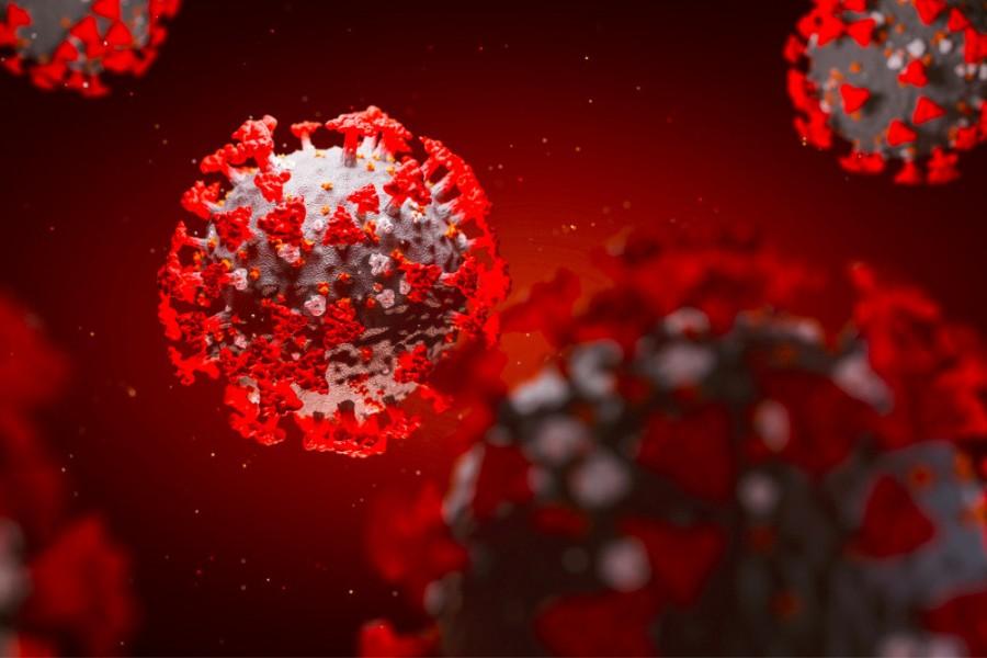Антитела к коронавирусу действуют два месяца, потом исчезают