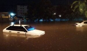 Одессу залило ночным ливнем — улицы затоплены, повалены сотни деревьев