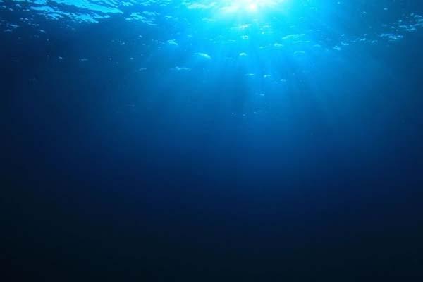 """В океане существуют гигантские """"зоны смерти"""""""