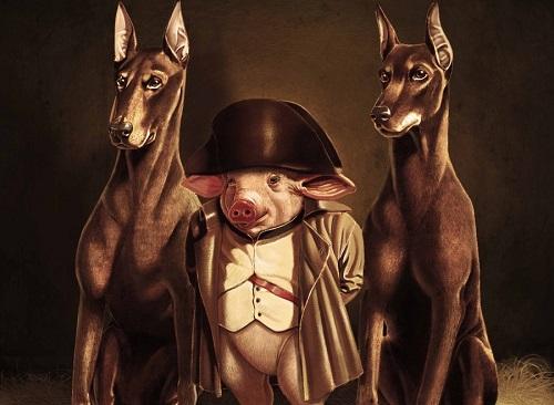 военные свиньи