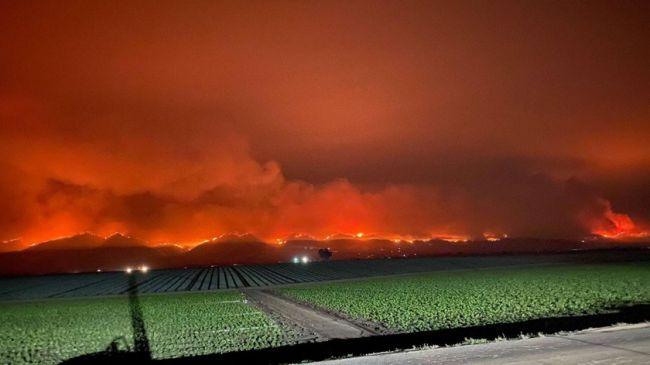 В Калифорнии зарегистрирован мегапожар площадью более 40000 гектаров