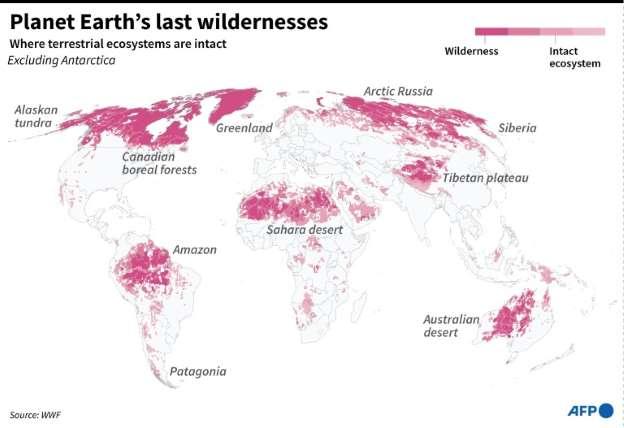 Планета умирает: мировая дикая природа резко сократилась - более чем на две трети за 50 лет