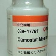 Камостат мезилат 1