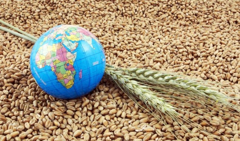 Мировые цены на продовольствие побили десятилетний рекорд