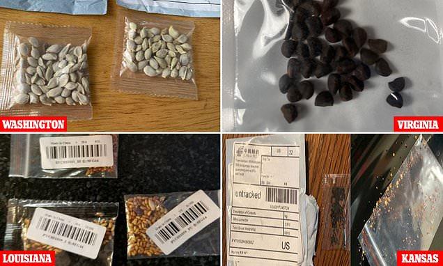 После Великобритании десятки людей в США стали получать таинственные пакеты семян из Китая