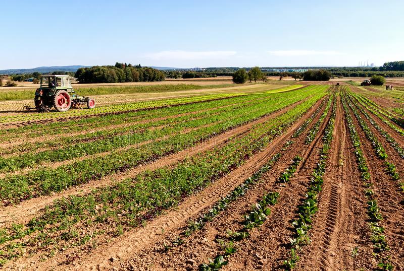 Сельское хозяйство 2