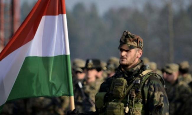 Будапешт добился своего. Венгрия введёт войска в Закарпатье под аплодисменты Киева
